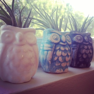 Ceramic owls with air plants, by Happy Los Angeles